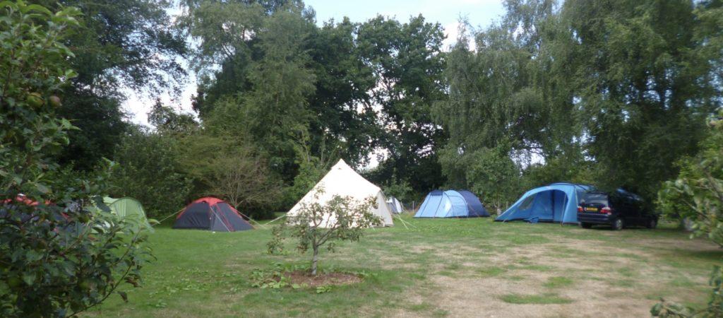 Bitcoin summer camp